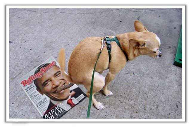 anjing-pooping-on-obama