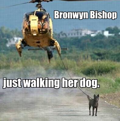 Bronwyn bishopwalking il cane