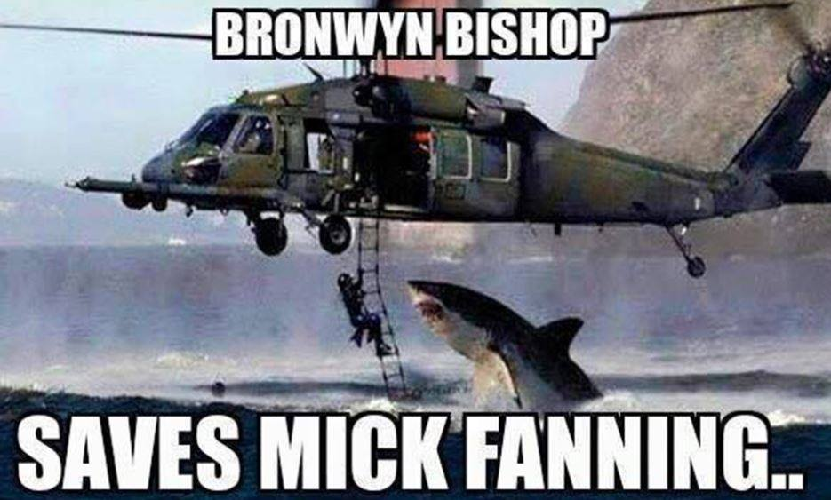 Bronwyn bishop enregistre mick fanning