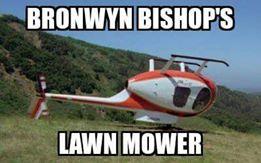 bronwyn obispos cortadora de césped