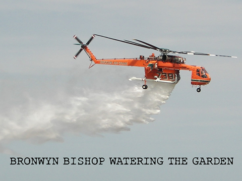 Bronwyn Bishop jardinage