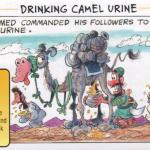 CAMEL URINE, THE PROPHET MUHAMMAD'S MIRACLE MEDICINE