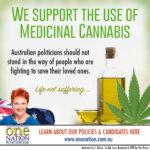 Pauline Hanson Screws Up Yet Again
