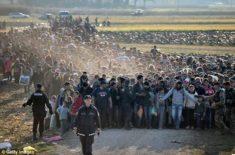 islamic invaders