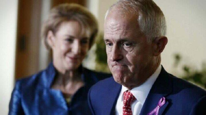 Turnbull en espèces